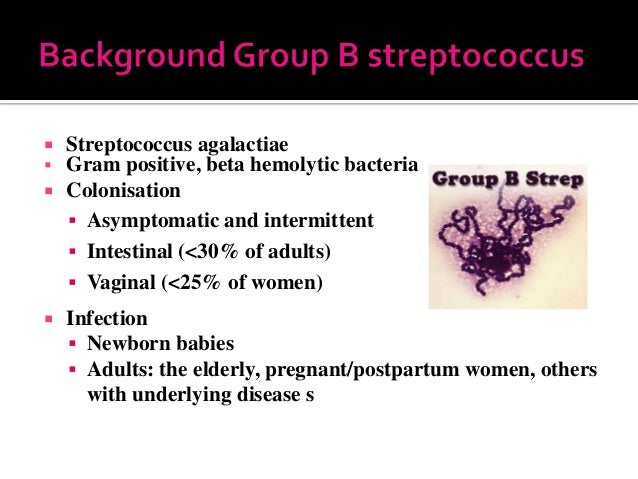 Adults and group b strep