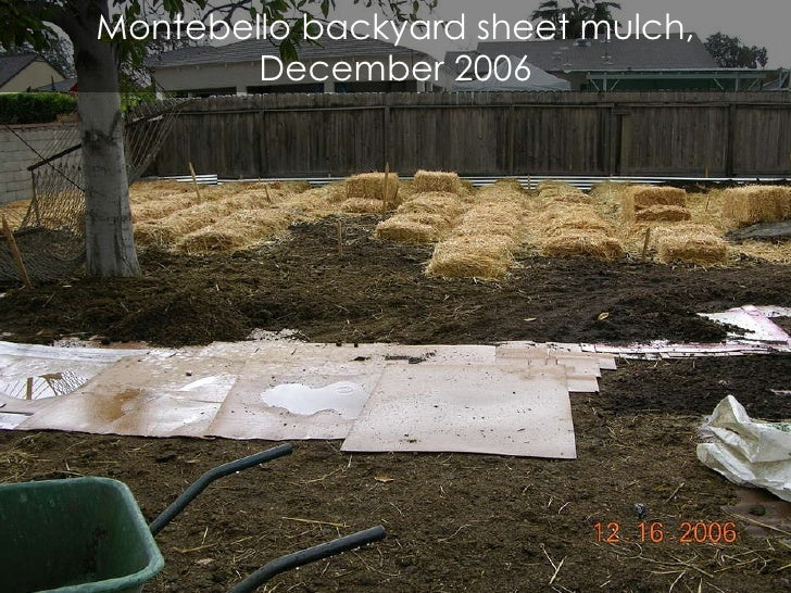 montebello backyard sheet mulch december - Mulch Designs