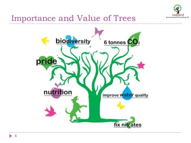 Earth day ppt 2016 importance and value of trees 4 ccuart