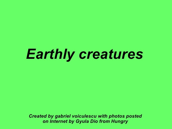Earthly creatures   Created by gabriel voiculescu with photos posted on Internet by Gyula Dio from Hungry