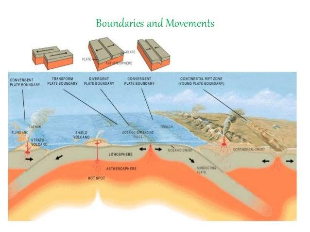 Global Distribution of Plate Tectonic
