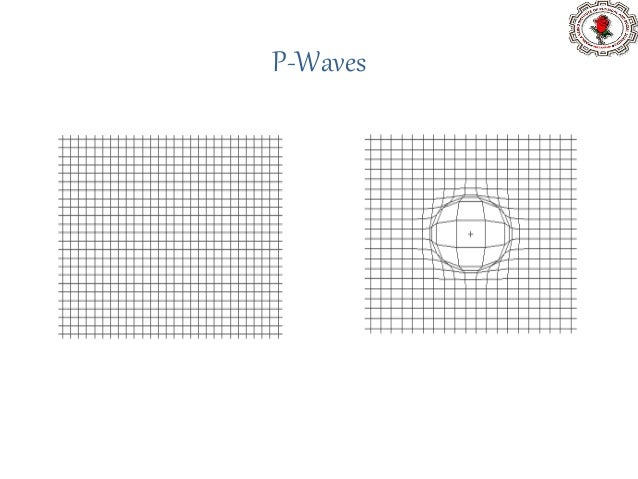 S- Wave / Secondary waves / Transverse wave • The nature of these waves resemble with water and light waves. These waves p...