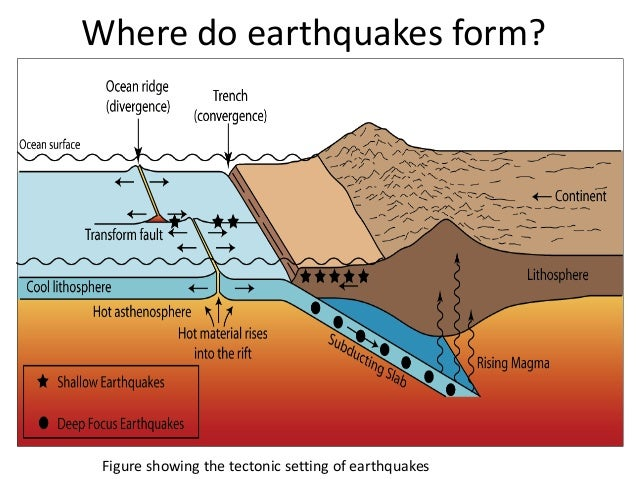 12 Causes and Effects of Tsunami You Must Know