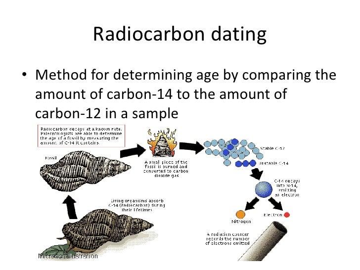 AMS Radiocarbon dating process