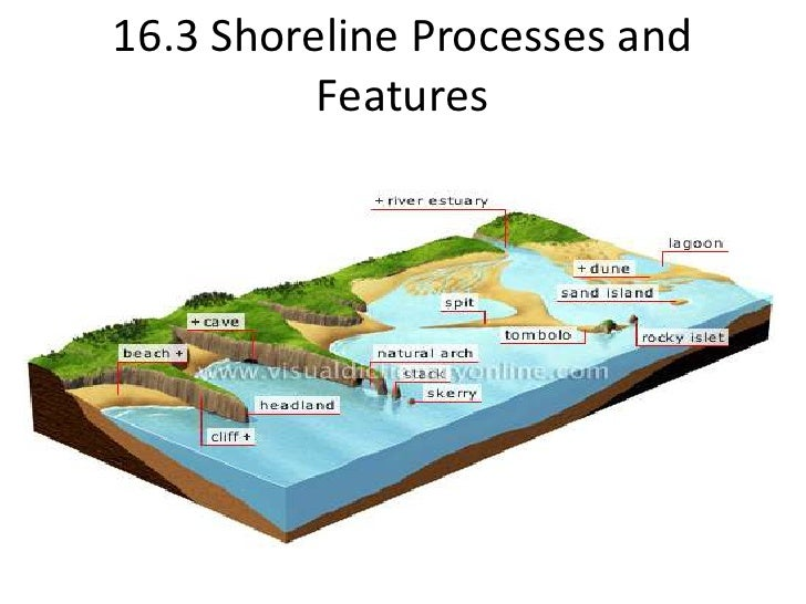 16.3 Shoreline Processes and Features <br />
