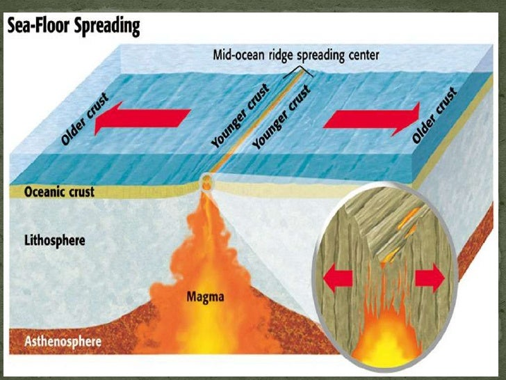 Earth science 42 restless continents for Evidence for sea floor spreading has come from