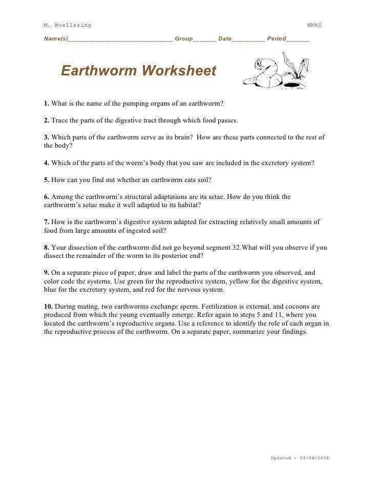 Earthworm Diagram Elementary - Wiring Diagram Database •