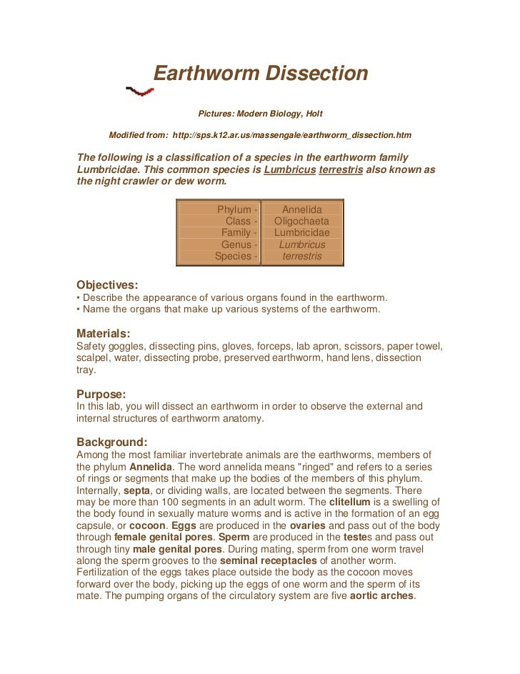 Modern Biology Earthworm Diagram - Search For Wiring Diagrams •