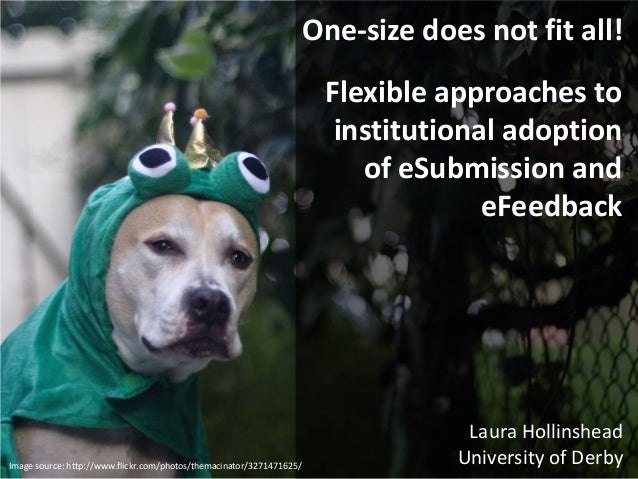 Flexible approaches to institutional adoption of eSubmission and eFeedback Laura Hollinshead University of Derby One-size ...