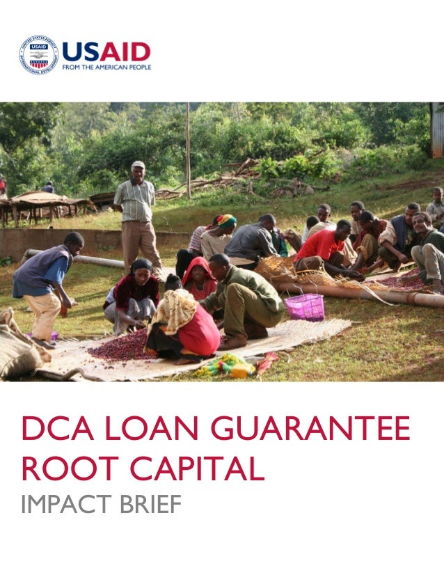 DCA LOAN GUARANTEEROOT CAPITALIMPACT BRIEF