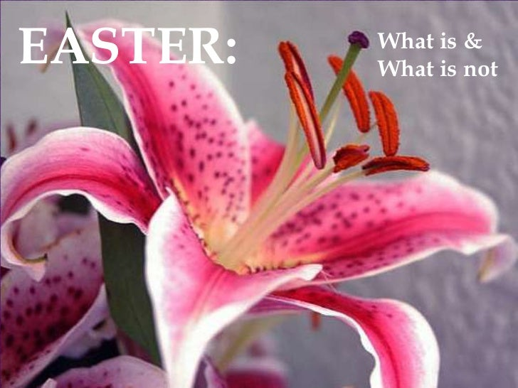 EASTER:<br />What is & <br />What is not<br />