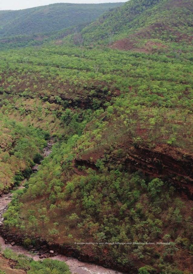 Eastern Ghats Environment Outlook Slide 3