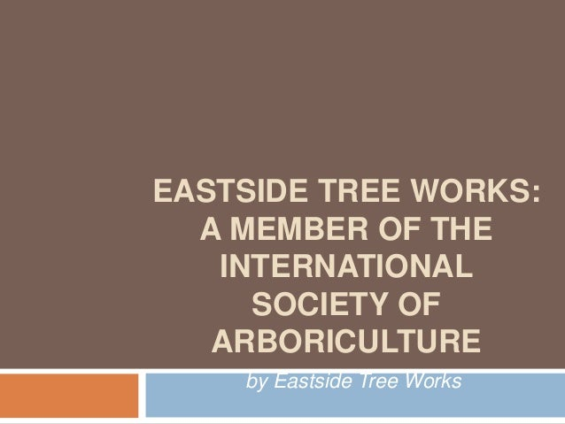 EASTSIDE TREE WORKS:  A MEMBER OF THE   INTERNATIONAL     SOCIETY OF   ARBORICULTURE    by Eastside Tree Works