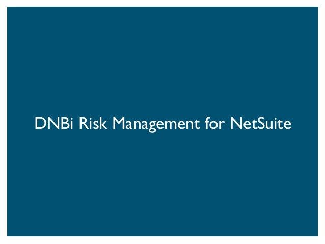 Dnbi risk management report