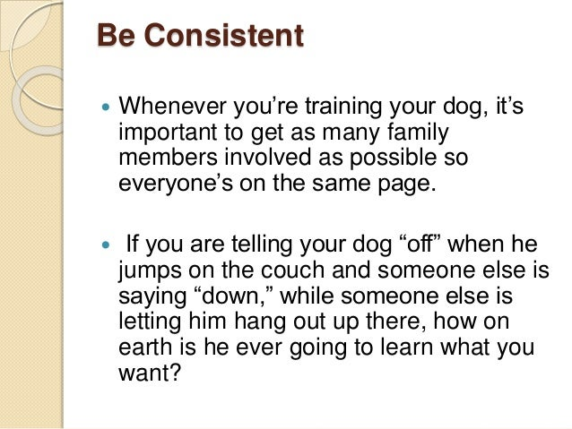 Be Consistent  Whenever you're training your dog, it's important to get as many family members involved as possible so ev...