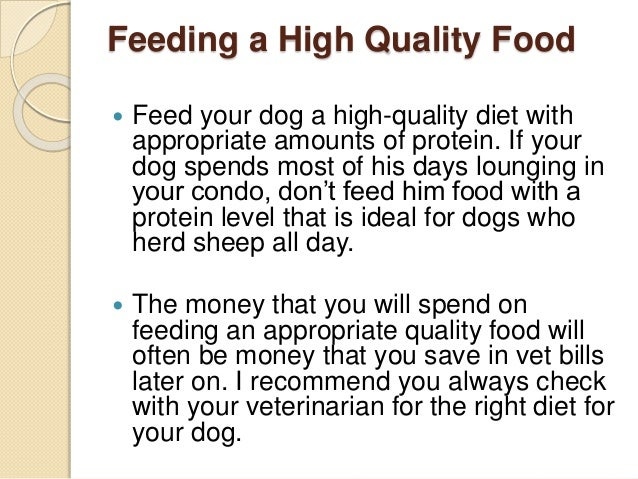 Feeding a High Quality Food  Feed your dog a high-quality diet with appropriate amounts of protein. If your dog spends mo...