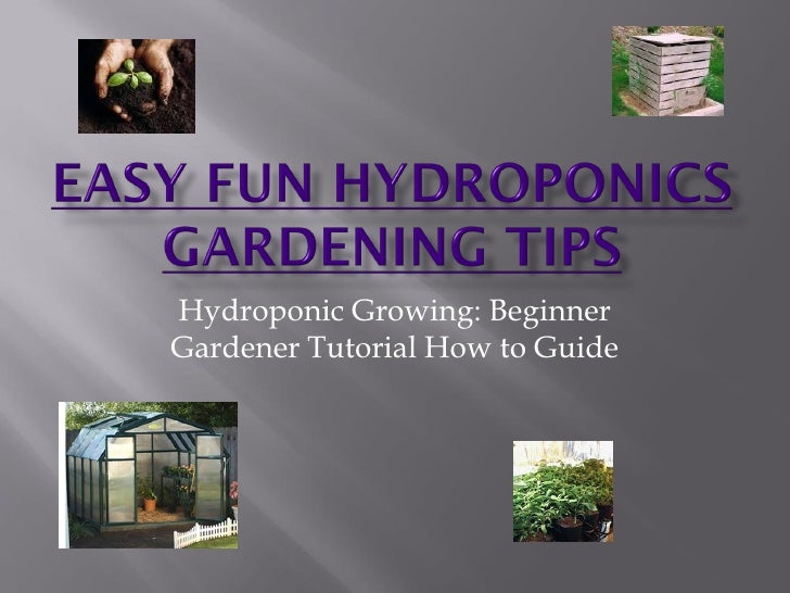Hydroponic Growing: Beginner Gardener Tutorial How to Guide