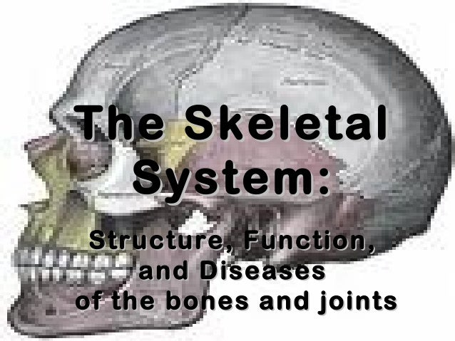 The SkeletalThe Skeletal System:System: Structure, Function,Structure, Function, and Diseasesand Diseases of the bones and...