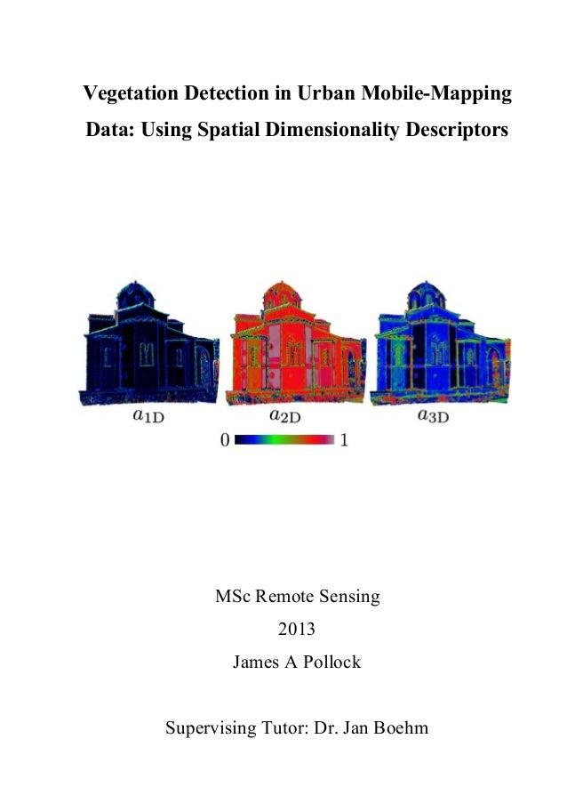 Vegetation Detection in Urban Mobile-Mapping Data: Using Spatial Dimensionality Descriptors MSc Remote Sensing 2013 James ...