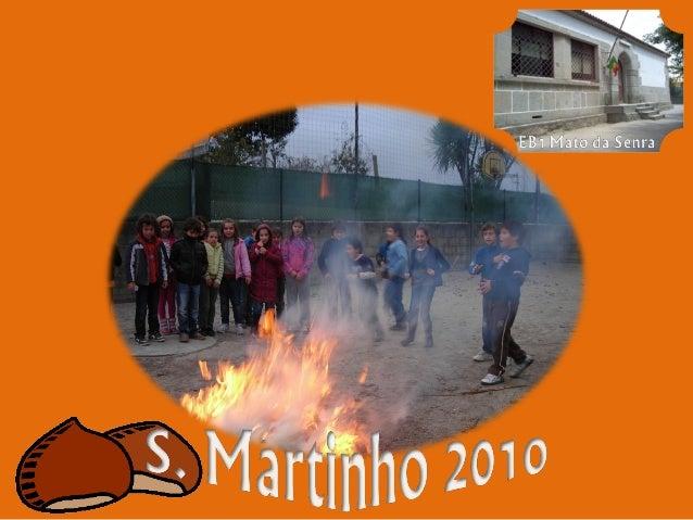 EB1 Mato da Senra - S. Martinho 2010