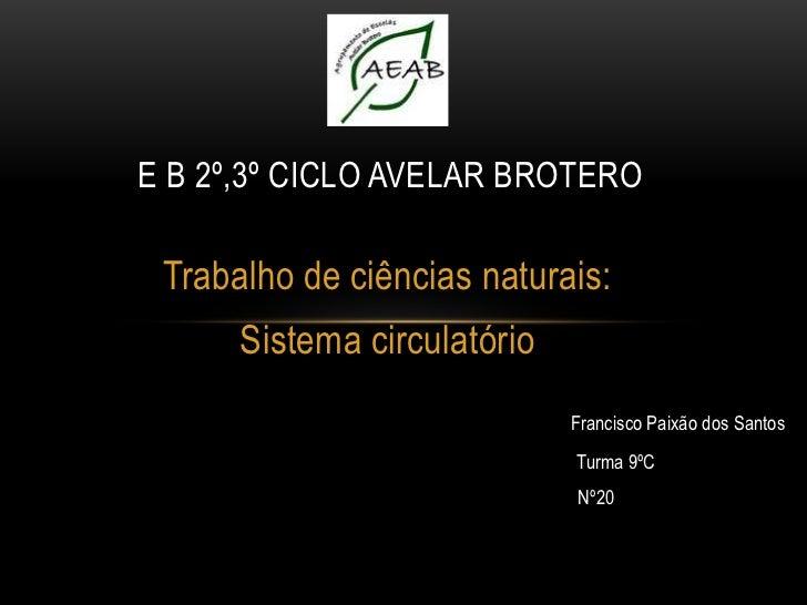 E B 2º,3º CICLO AVELAR BROTERO Trabalho de ciências naturais:      Sistema circulatório                             Franci...