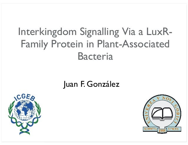 Interkingdom Signalling Via a LuxR- Family Protein in Plant-Associated Bacteria Juan F. González