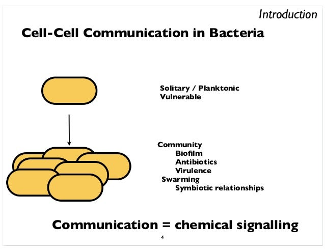 quorum sensing in bacteria communication equals modification Cell-- cell communication quorum-sensing (qs), the ability of microorganisms to sense the bacterial cell density (or 'quorum'.