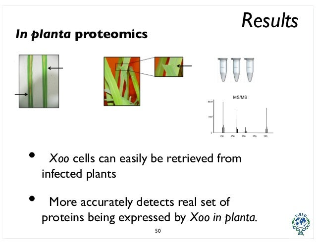 proteomics phd thesis Writing dissertation in two weeks proteomics phd thesis will you write my essay for me i need help solving a statistics homework.