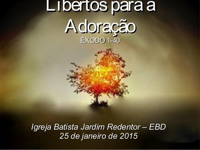 LibertosparaaLibertosparaa AdoraçãoAdoração ÊXODO 1-40ÊXODO 1-40 Igreja Batista Jardim Redentor – EBDIgreja Batista Jardim...
