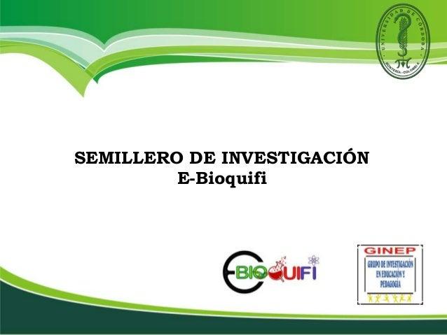 SEMILLERO DE INVESTIGACIÓN E-Bioquifi