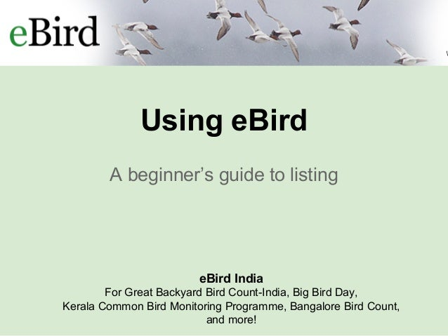 E bird introduction