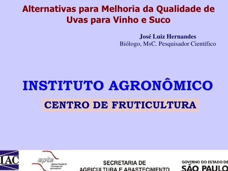 Alternativas para Melhoria da Qualidade de           Uvas para Vinho e Suco                             José Luiz Hernande...