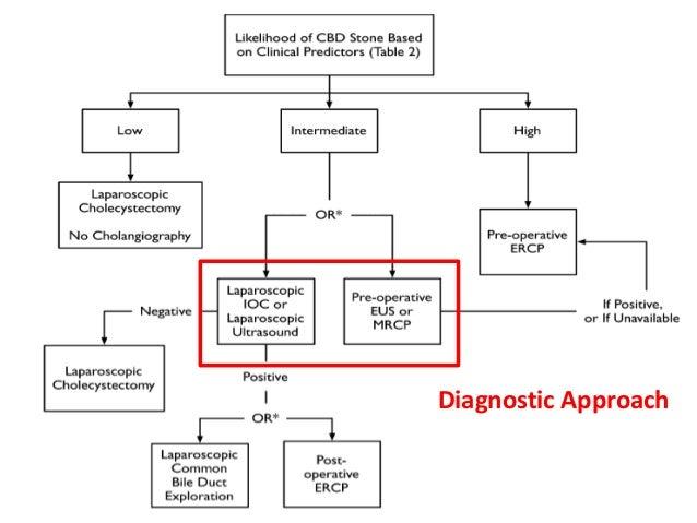 26 Diagnostic Approach