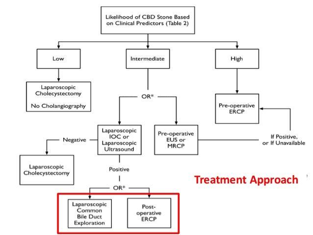27 Treatment Approach