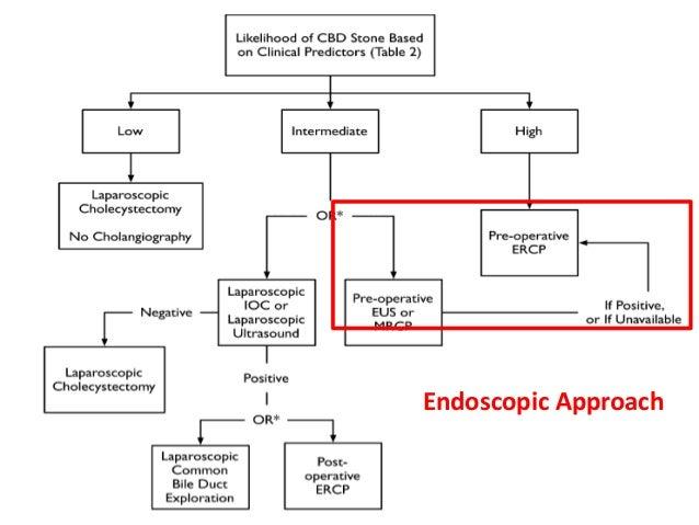 29 Endoscopic Approach