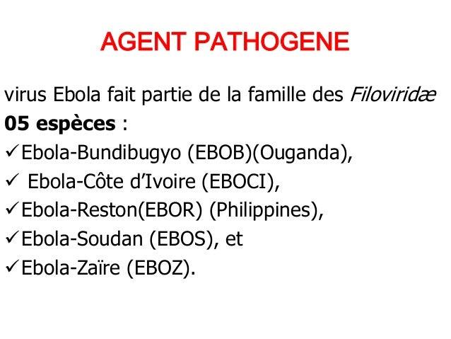 MIEUX COMPRENDRE LA FIEVRE EBOLA PAR LE Dr CHERIF Djibril  Slide 3
