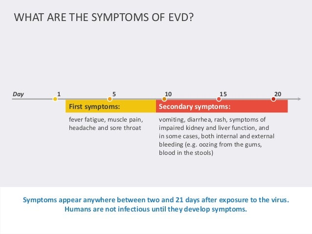 WHAT ARE THE SYMPTOMS OF EVD?  Day 1 5 10 15 20  First symptoms: Secondary symptoms:  fever fatigue, muscle pain,  headach...