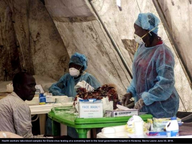Government health workers administer blood tests to check for the Ebola virus in Kenema, Sierra Leone June 25, 2014.