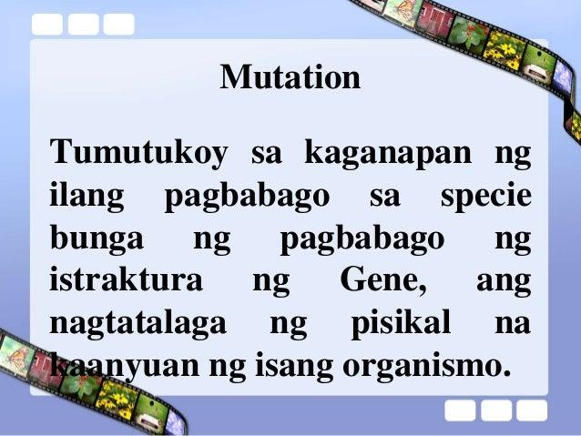 ebolusyon ng tao Ebolusyon ng tao - download as powerpoint presentation (ppt / pptx), pdf file  (pdf), text file (txt) or view presentation slides online.