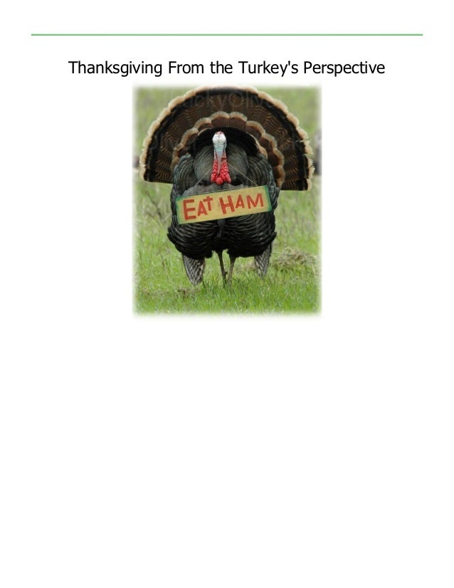 Thanksgiving From the Turkeys Perspective