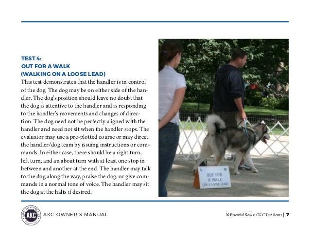 Akc Canine Good Citizen Cgc Test Items