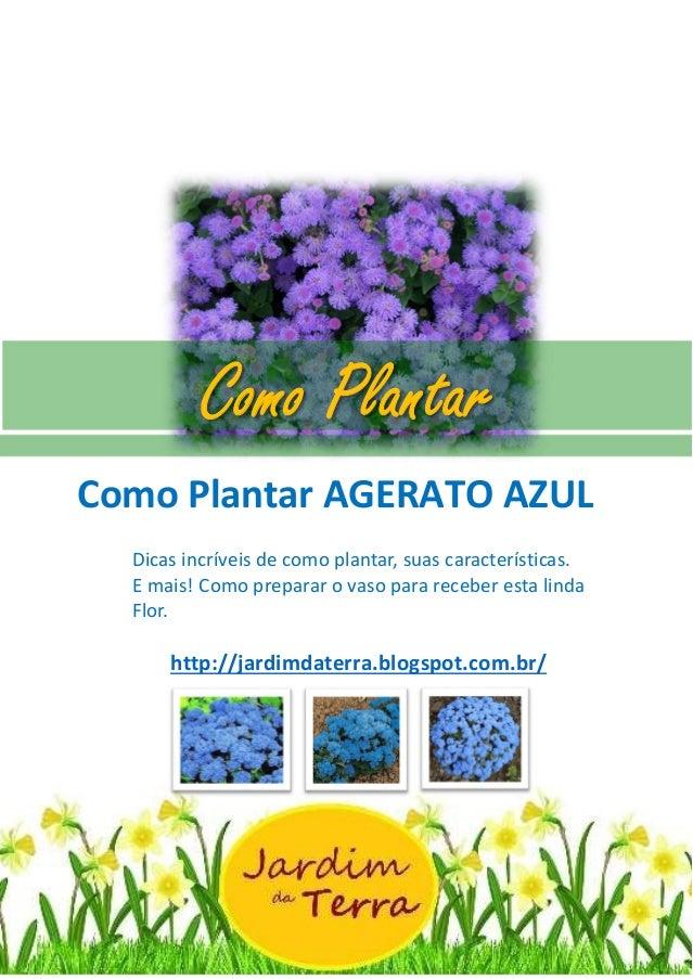Como Plantar AGERATO AZUL Como Plantar AGERATO AZUL Dicas incríveis de como plantar, suas características. E mais! Como pr...