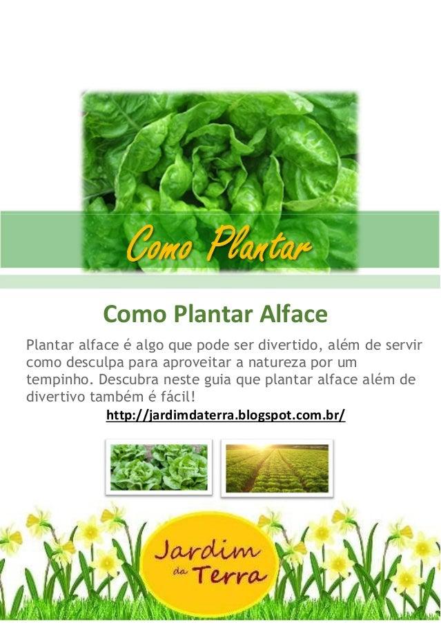 Como Plantar ALFACE Como Plantar Alface Plantar alface é algo que pode ser divertido, além de servir como desculpa para ap...