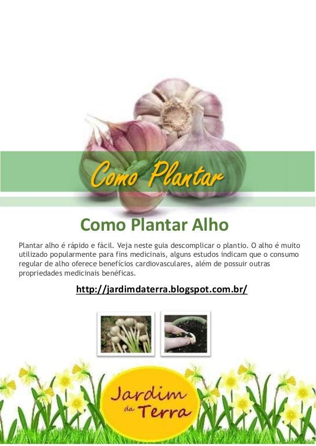 Como Plantar ALHO Como Plantar Alho Plantar alho é rápido e fácil. Veja neste guia descomplicar o plantio. O alho é muito ...