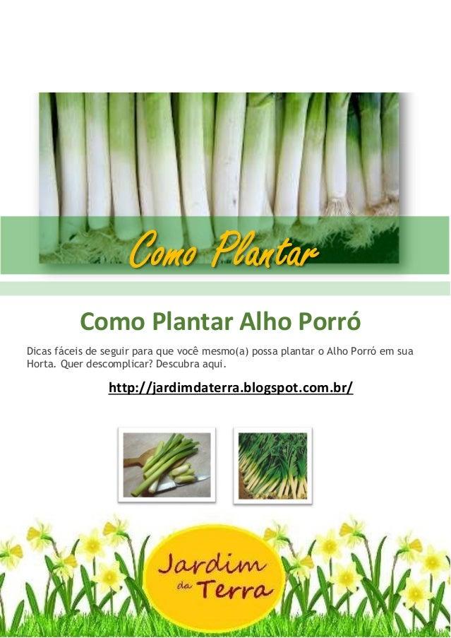 Como Plantar ALHO PORRÓ Como Plantar Alho Porró Dicas fáceis de seguir para que você mesmo(a) possa plantar o Alho Porró e...