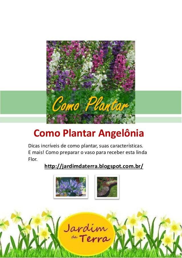 Como Plantar ANGELONIA http://jardimdaterra.blogspot.com.br/ Como Plantar Angelônia Dicas incríveis de como plantar, suas ...