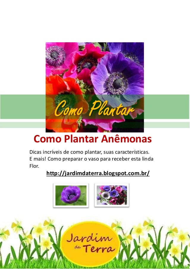 Como Plantar ANEMONAS http://jardimdaterra.blogspot.com.br/ Como Plantar Anêmonas Dicas incríveis de como plantar, suas ca...