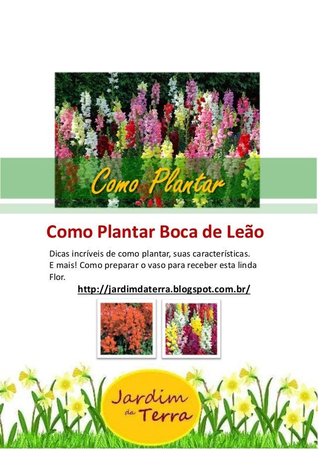 Como Plantar BOCA DE LEAO http://jardimdaterra.blogspot.com.br/ Como Plantar Boca de Leão Dicas incríveis de como plantar,...