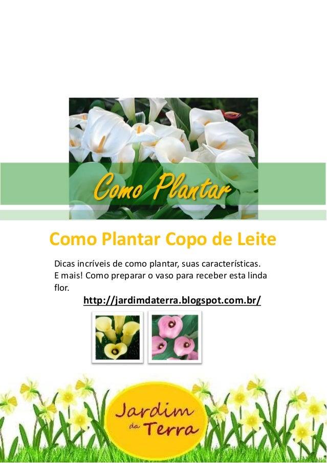 Como Plantar Copo de leite http://jardimdaterra.blogspot.com.br/ Como Plantar Copo de Leite Dicas incríveis de como planta...
