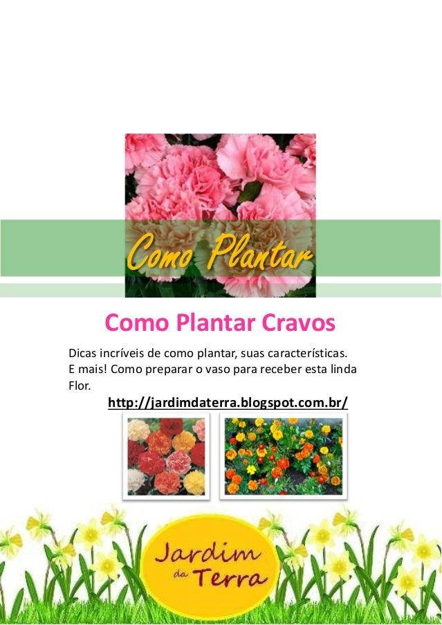 Como Plantar Cravos http://jardimdaterra.blogspot.com.br/ Como Plantar Cravos Dicas incríveis de como plantar, suas caract...